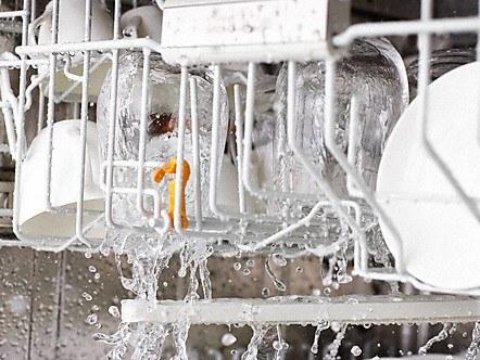 Frischwasserspuler